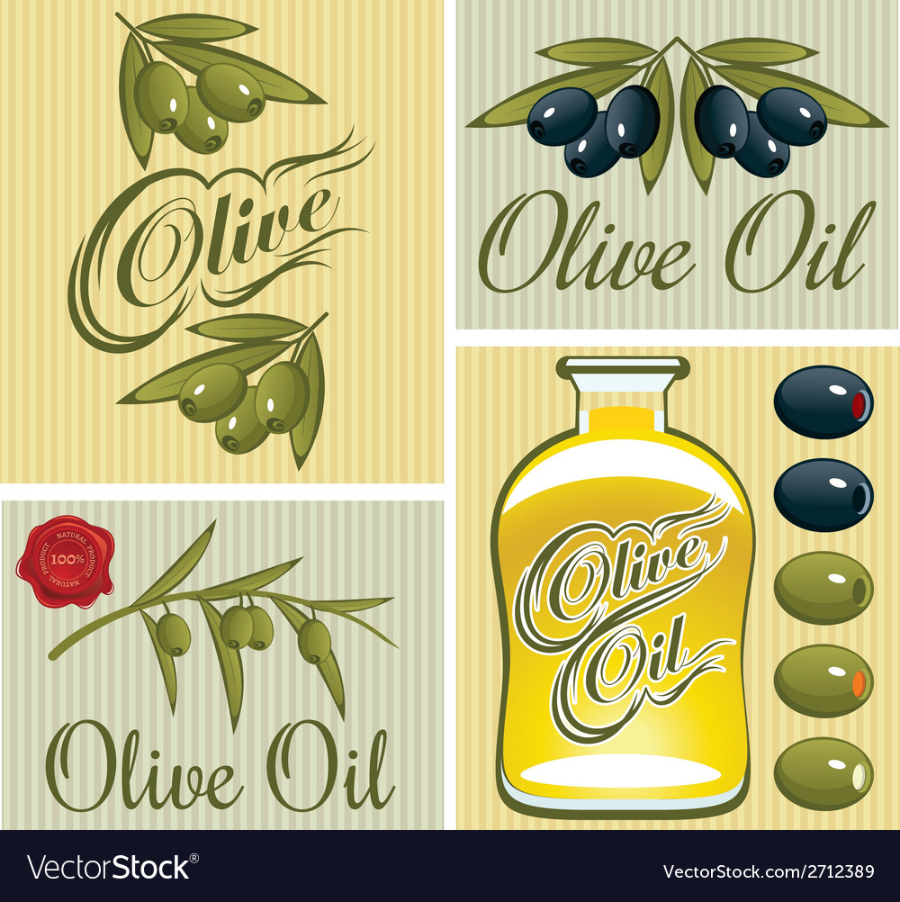 Set of design elements for olive oil vector | Price: 1 Credit (USD $1)
