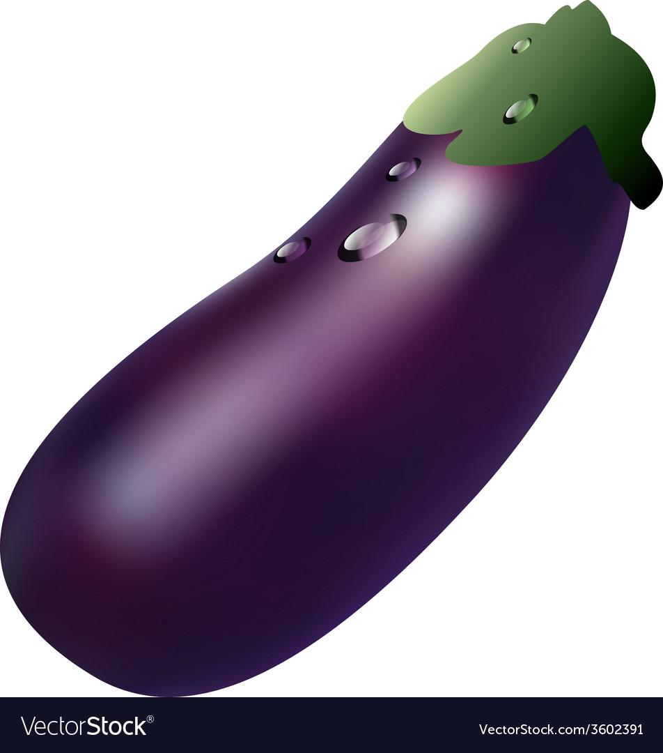 Aubergine vector | Price: 1 Credit (USD $1)