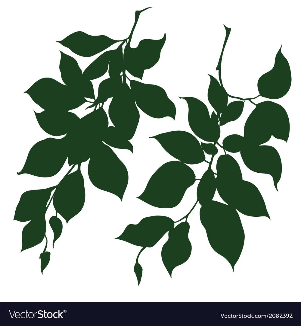 Decorative branches vector | Price: 1 Credit (USD $1)
