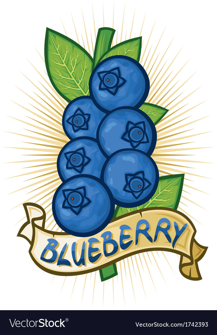 Blueberries label vector | Price: 1 Credit (USD $1)