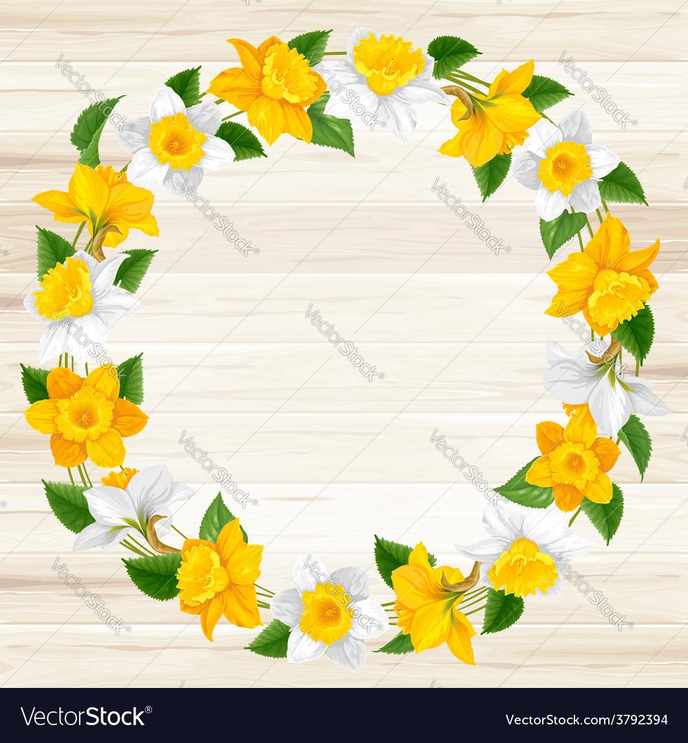 Daffodils frame vector