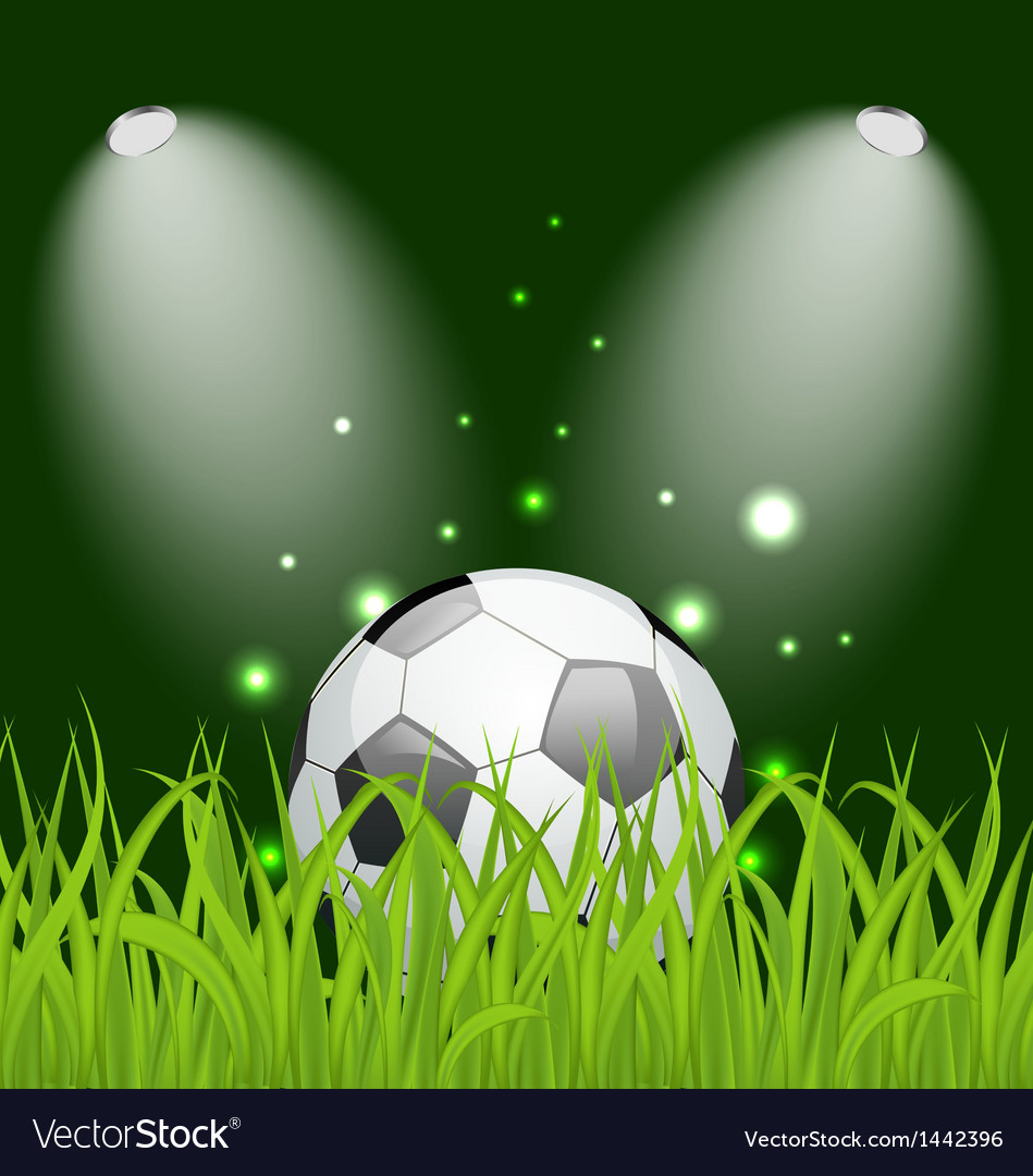 Soccer ball on green grass with light vector | Price: 1 Credit (USD $1)