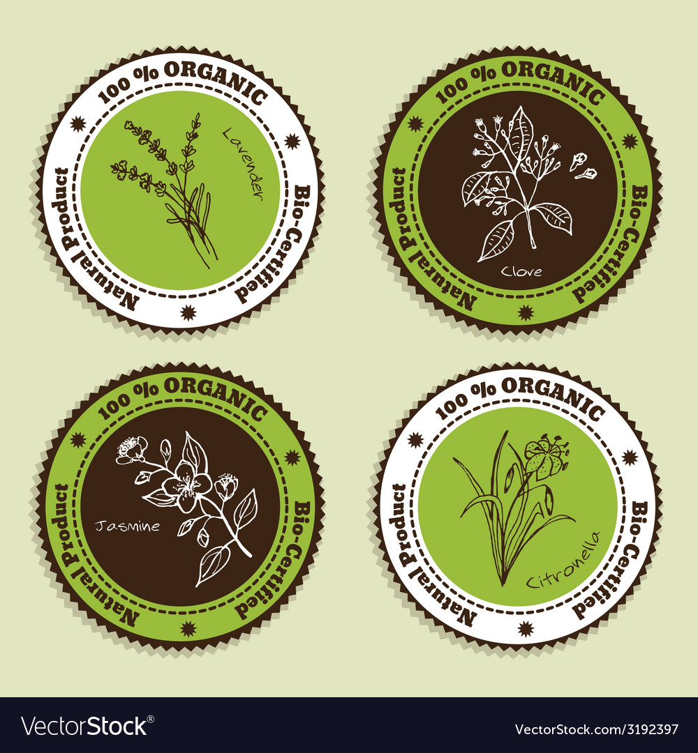 Set of natural organic product badges vector | Price: 1 Credit (USD $1)