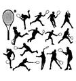 Tennis 3 vector