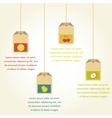 Tea bags with fruit flavor  infographics vector