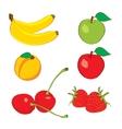 Colorful fruits in hand drawn sketch vector