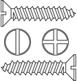 Stainless steel screw vector