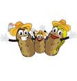 Potato family vector