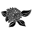 Decorative hydrangea vector