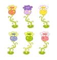 Exotic flowers vector