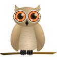 Brown owl with orange eyes vector