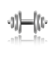 Metal sports dumbbell with reflection vector