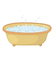 Bath with bubbles vector