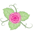 Colored with rose leaves vector