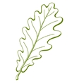 F oak tree vector vector