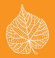 Dry leaf autumn vector