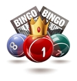 Bingo or lottery balls and cards with crown vector