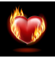 Heart on fire vector