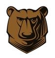 Big brown bear head vector