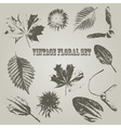 Vintage style floral elements vector