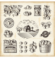 Vintage apple harvest set vector