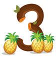 Three pineapples vector