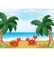 Seashore crabs vector