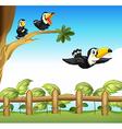 The three birds vector