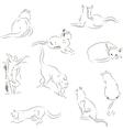 Cats sketches set vector