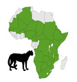 Cheetah distribution africa vector