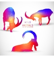Geometric silhouettes of animals goat ibexes vector