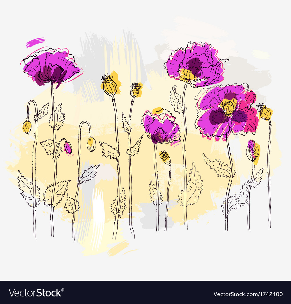 Red poppies on a white background vector   Price: 1 Credit (USD $1)