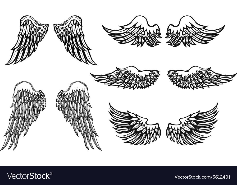 Hand-drawn wings set vector