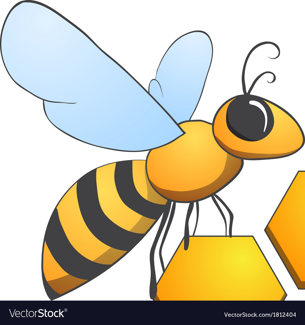 Bee on honeycells vector | Price: 1 Credit (USD $1)