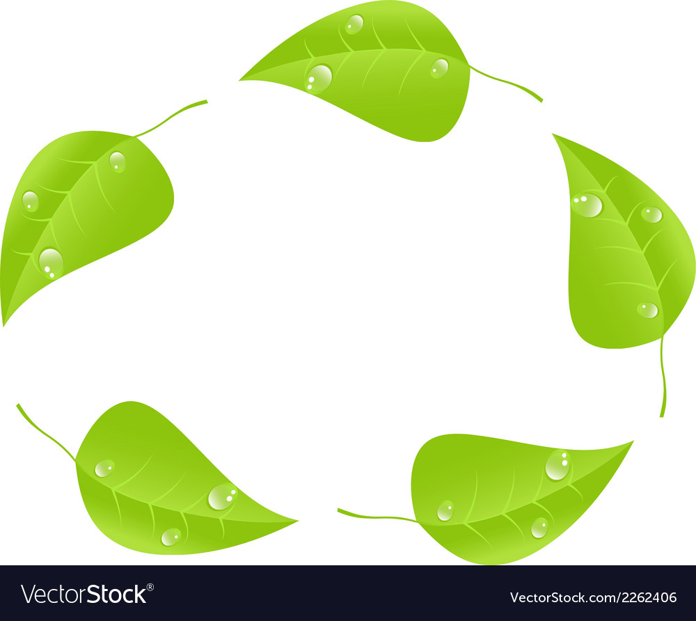 Green leaf with space for text eps10 vector | Price: 1 Credit (USD $1)