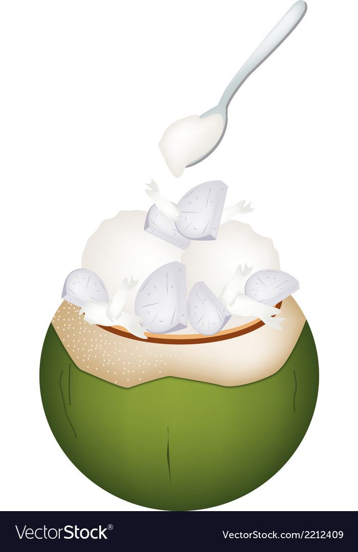 Coconut ice cream with nuts and taro vector | Price: 1 Credit (USD $1)
