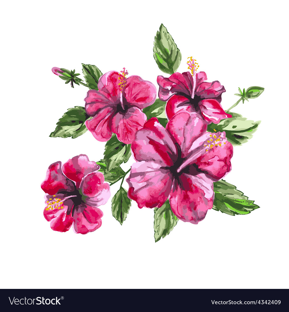 Hibiscus watercolor painting exotic flower vector | Price: 1 Credit (USD $1)
