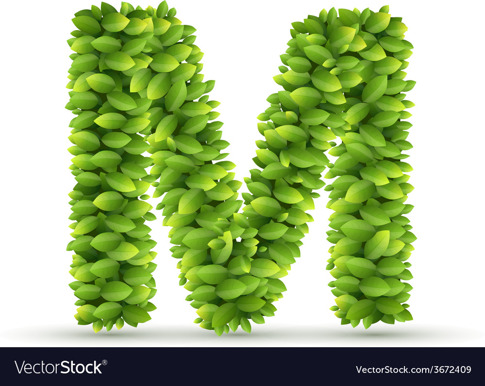 Letter m alphabet of green leaves vector | Price: 1 Credit (USD $1)