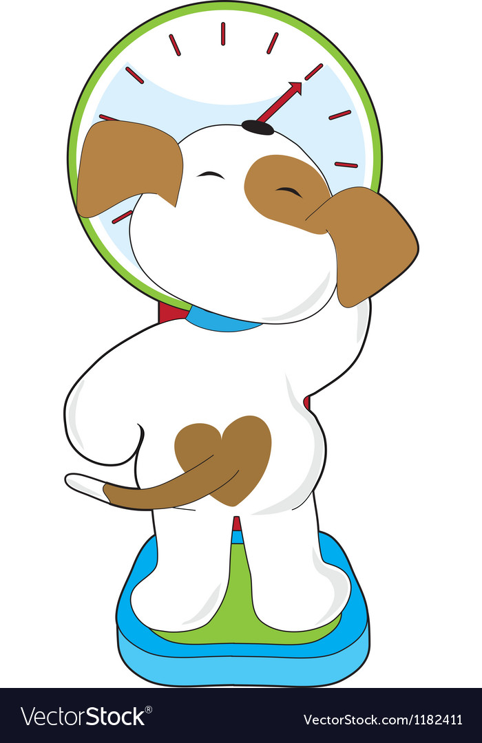 Puppy on scale vector | Price: 1 Credit (USD $1)