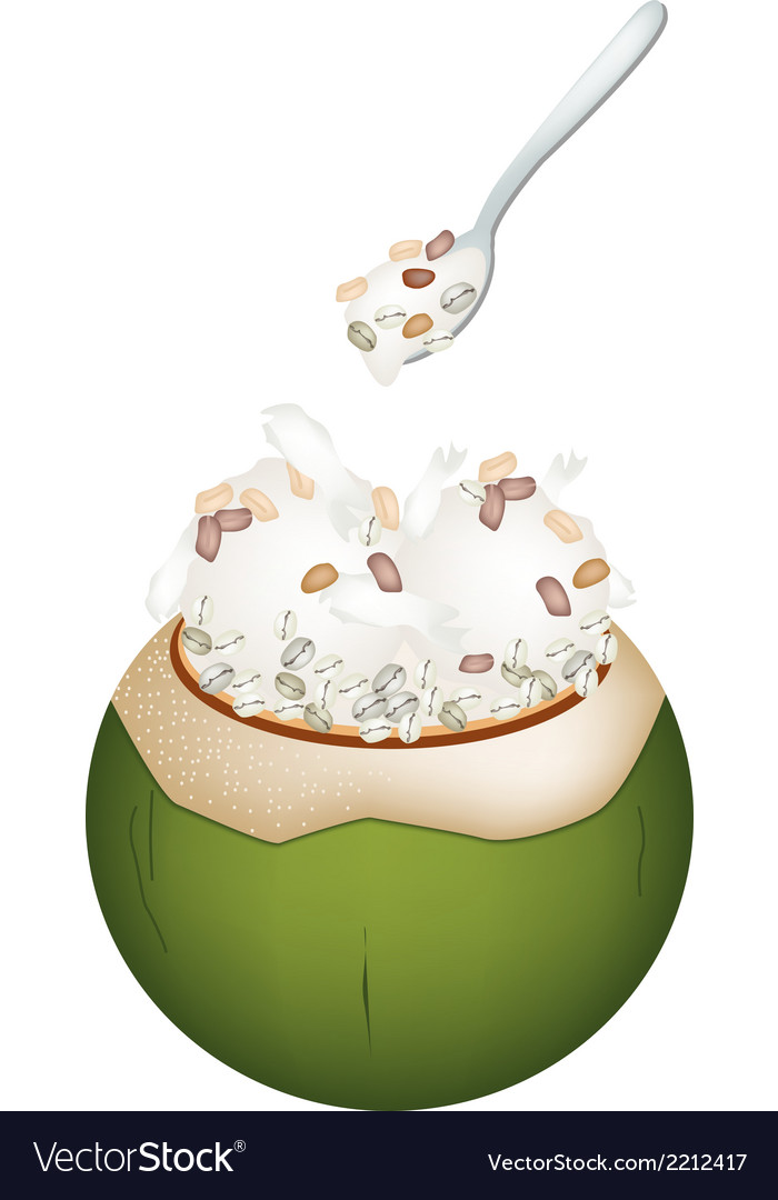 Coconut ice cream with nuts and pearl barley vector | Price: 1 Credit (USD $1)