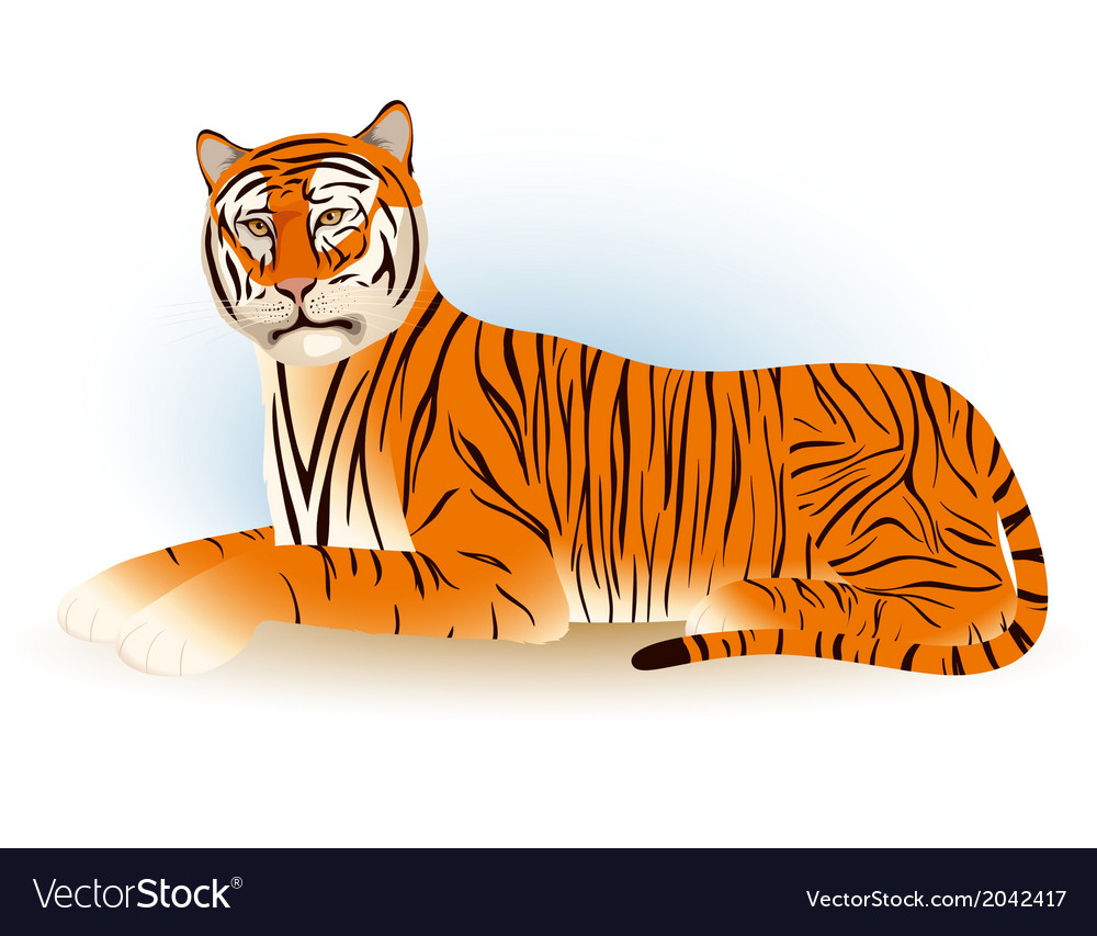 Tiger lies vector | Price: 1 Credit (USD $1)