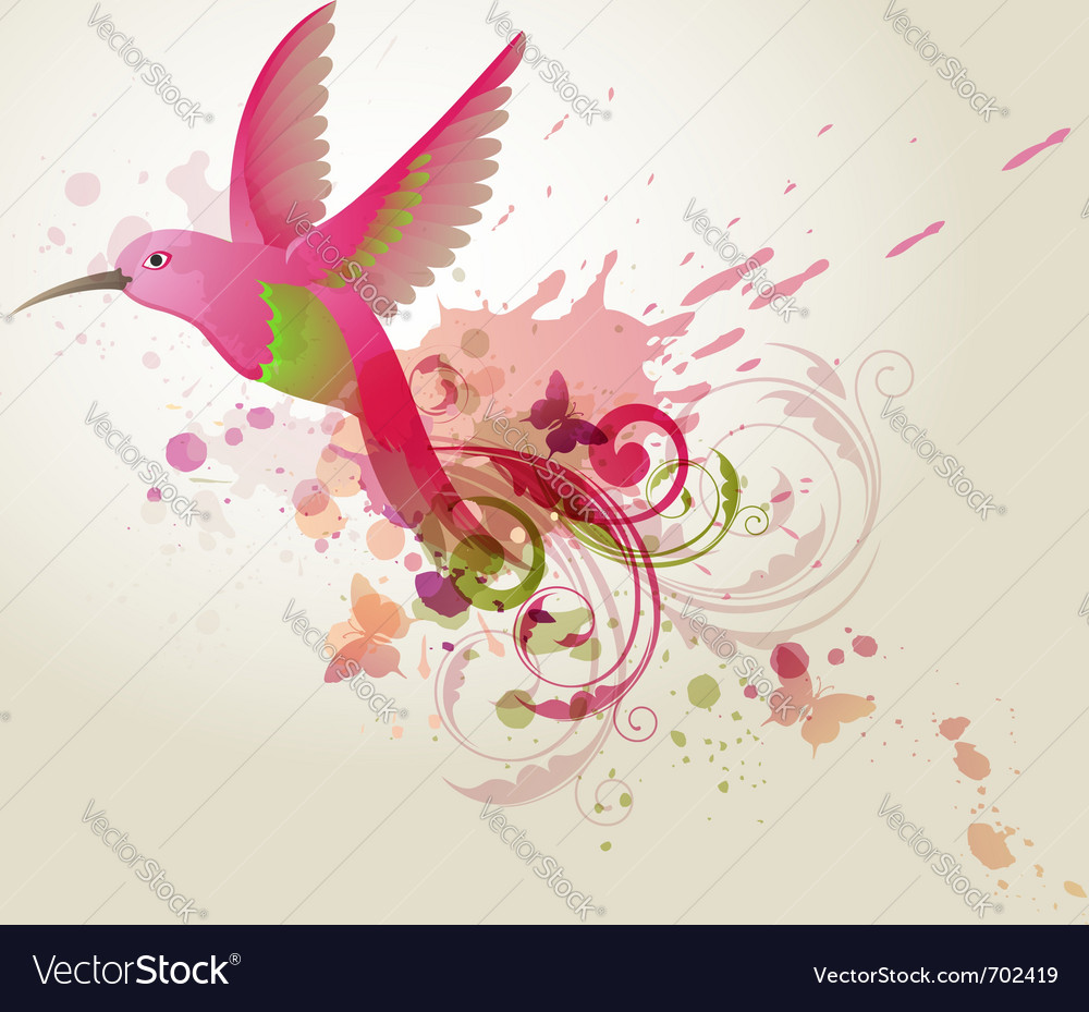 Humming-bird vector | Price: 1 Credit (USD $1)