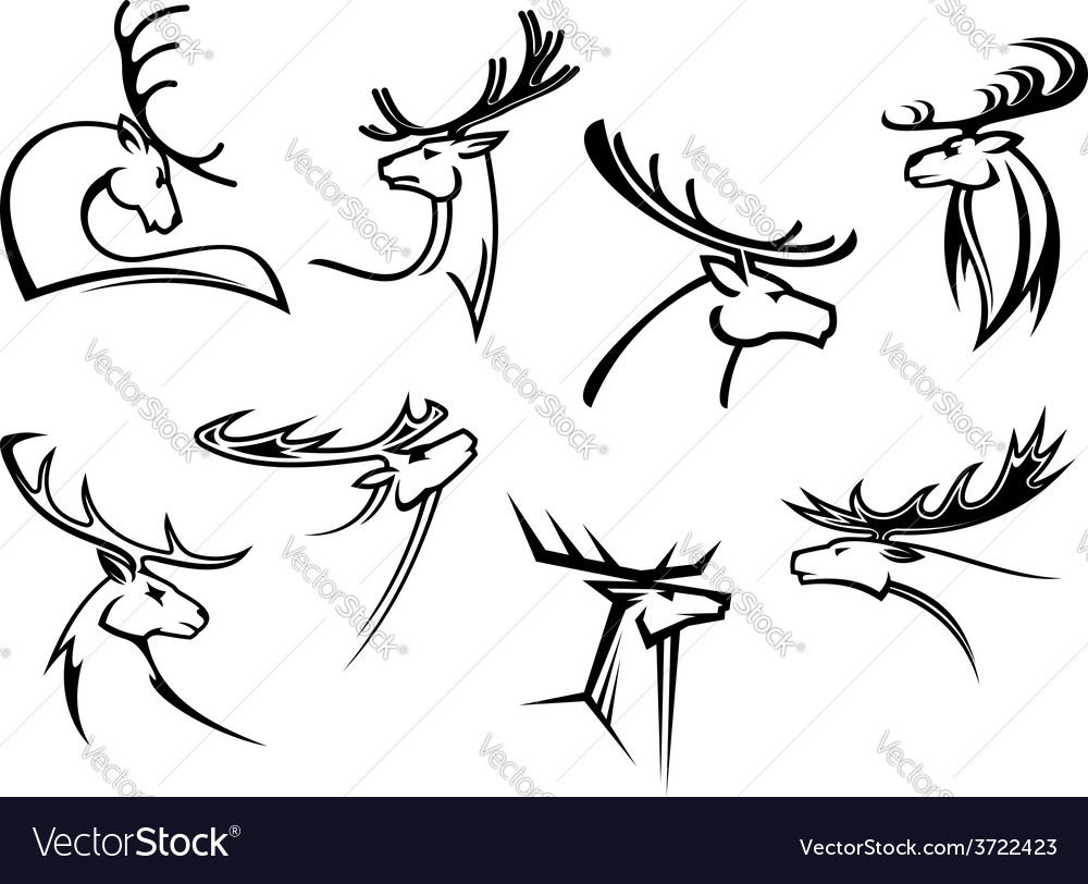 Proud profile of deer in outline style vector | Price: 1 Credit (USD $1)