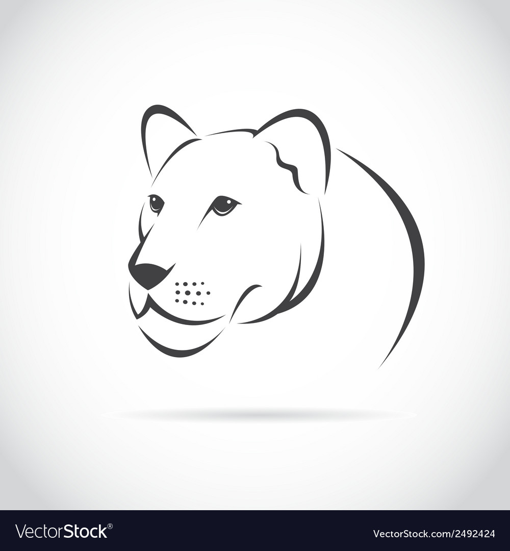 Image of an female lion head vector | Price: 1 Credit (USD $1)