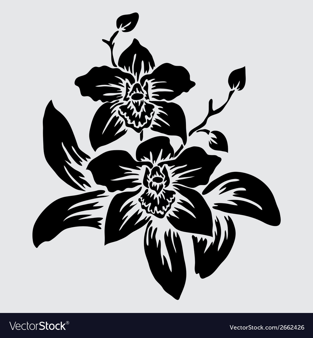 Decorative orchid vector | Price: 1 Credit (USD $1)