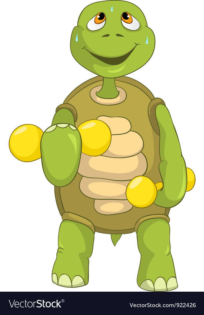 Funny turtle gym vector | Price: 1 Credit (USD $1)