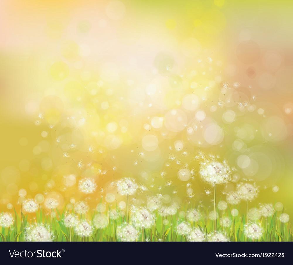 Floral spring sunshine background vector | Price: 1 Credit (USD $1)