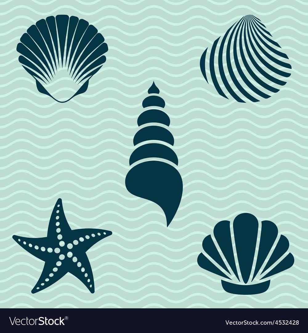 Sea shells vector | Price: 1 Credit (USD $1)