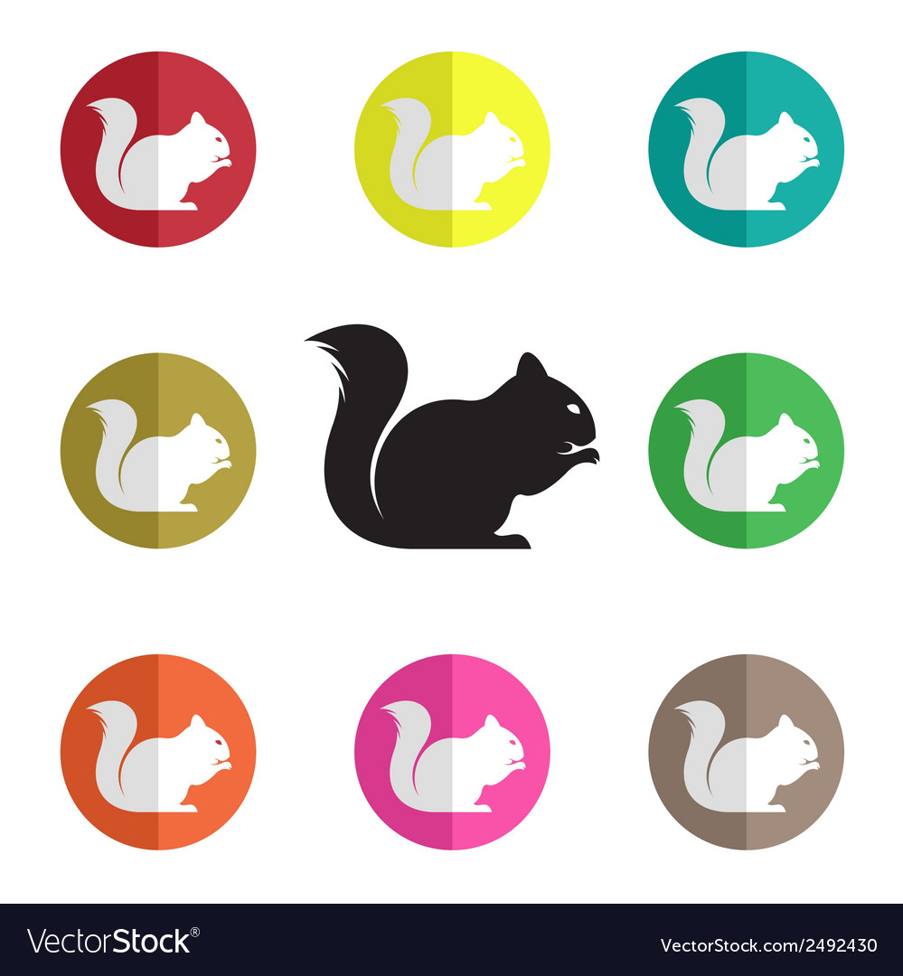 Group of squirrel vector | Price: 1 Credit (USD $1)