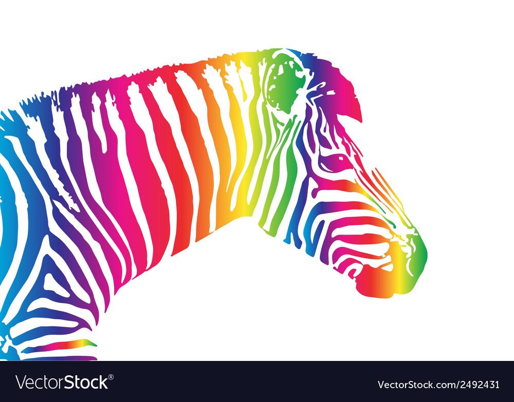 Image of an zebra head vector   Price: 1 Credit (USD $1)